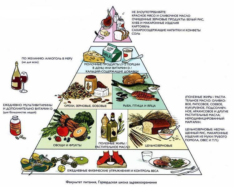здоровый отдых и питание